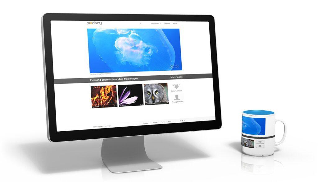 otodom blog seo, katalog firm